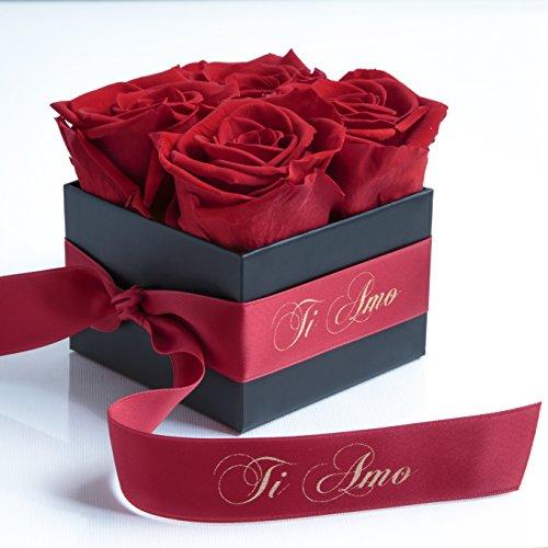 ROSEMARIE SCHULZ® Heidelberg Ti Amo - Rosenbox mit konservierten Rosen haltbar 3 Jahre Geschenke für Freundin/Valentinstag/8,5 x 8,5 cm (Ti Amo, Rot)