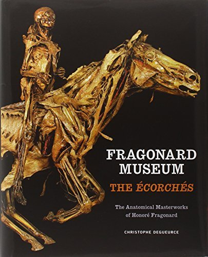 Fragonard Museum: The Ecorches by Degueurce, Christophe (2011) Hardcover