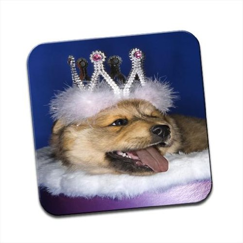 Puppy Wearing Crown Lying in Royal Bed Single Premium Glossy Wooden Coaster