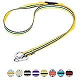 Blueberry Pet 3M Reflective Multi-colored Stripe Yellow and Green Men Women Fashion Non Breakaway Lanyard Keychain for Keys/ID Card/Badge Holder, 1.25cm Wide