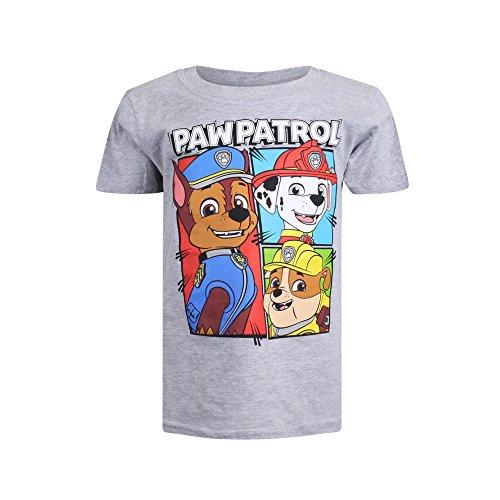 PAW PATROL Jungen Team T-Shirt, Grau (Grey Marl SPO), XS