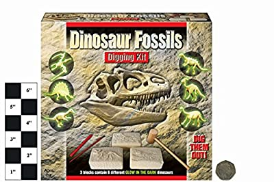 Dig Out Dinosaur Fossil Jurassic Prehistoric World Creatures Digging Kit Skeletons Toy by KandyToys from Pms