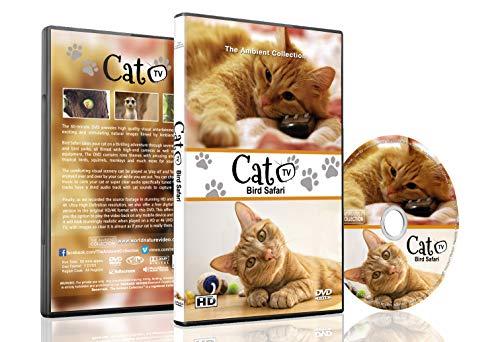 Familie Haustiere DVD - Katzen TV - Unterhalten Sie Ihre Haustiere mit anregenden Bildern von niedlichen kleinen Tieren mit natürlichen Geräuschen
