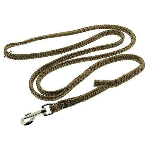 Dinoleine Hundeleine, Längenverstellbar, Inkl. Standard Messing-Karabiner, Polyester, Maße: 130-220 cm, Sand, 200805