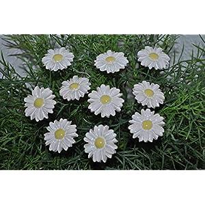 10 Keramik-Gänseblümchen, weiß ca. 2,5 cm von SylBer-Ceramics aus Markkleeberg