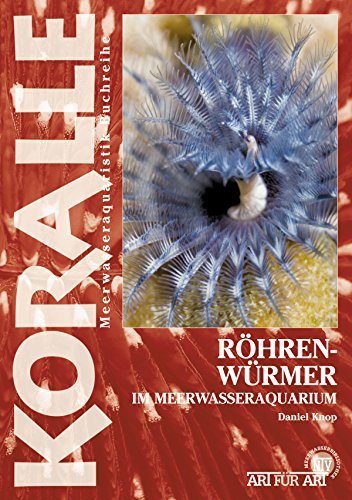 Röhrenwürmer im Meerwasseraquarium (Art für Art)