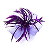 Bride Boutique Wedding Ascot Races Looped Mesh Feather & Pearl Bead Flower Hair Clip Fascinator (Purple) by Bride Boutique