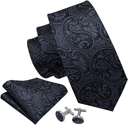 Barry.Wang Paisley Ties for Men ...