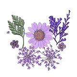 oukerst fiori secchi foglia decorazione resina UV fiore secco bellezza nail art decalcomanie resina epossidica fai da te gioielli di riempimento