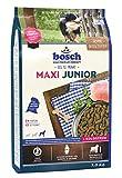 Bosch Cibo Secco per Cane Maxi - 3000 gr