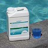 BAYROL Desalgin - Flüssiges Algizid - Hochkonzentriert, ohne Chlor und mit Klareffekt - Verhindert Algenwachstum im Pool - 3 L