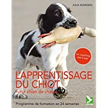 Eduquer son chiot, futur chien de chasse : Programme de formation en 24 semaines