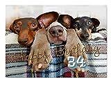 DigitalOase Glückwunschkarte 34. Geburtstag Geburtstagskarte Grußkarte Format DIN A4 A3 Klappkarte PanoramaUmschlag #DOGS Tiere Hunde