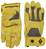 Black Diamond Transition Glove (NATURAL, M) - Best Reviews Guide