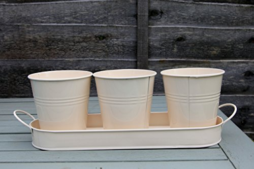galvanized-zinc-metal-herb-flower-pots-planter-set-of-3-on-tray-various-colours-cream