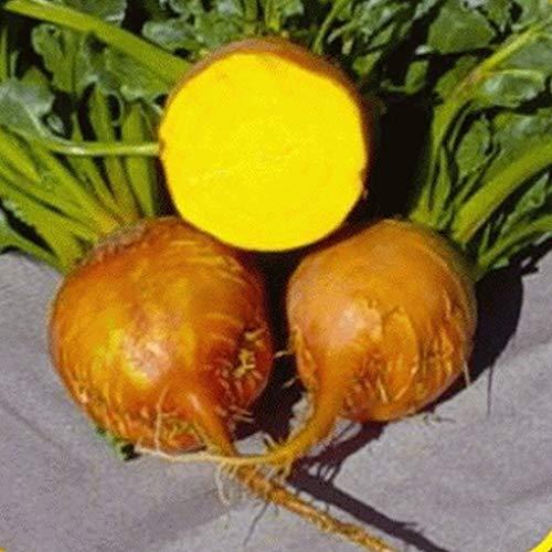 Farmerly 1 Oz Burpee's Golden Beet Seeds