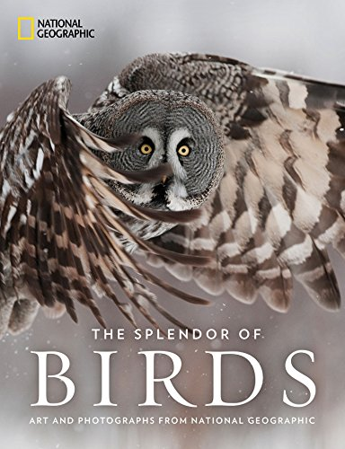 The Splendor of Birds: Art and Photography From National Geographic por National Geographic