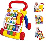 Vinsani 2 In 1 Childrens Baby Musical Sounds Activity Push Along Walker