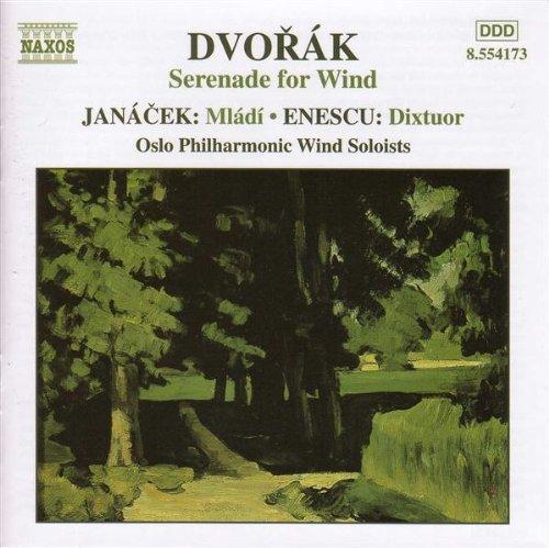 Serenade in D minor, Op. 44: I...