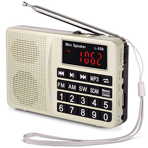PRUNUS L-258SW Portable Radio mit SW/UKW FM/AM(MW)/SD/TF/USB(0-64 GB) MP3 Basslautsprecher(Keine manuelle Einsparung von Radio Station-Funktion) (Fm-radio-basslautsprecher)