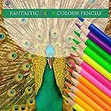 12Neon Couleur crayon Surligneur fluorescent marqueur crayon Dessin Crayons de couleur pour dessin Sketch Art Supplies