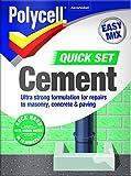 Polycell Cemento a presa rapida Polyfilla, 2kg–grigio