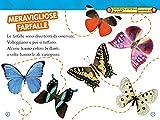 Da-bruco-a-farfalla-Livello-2-Ediz-a-colori