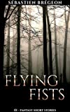 Flying fists (Fantasy short stories Book 1)