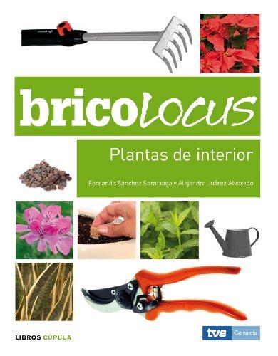 bricolocus-plantas-de-interior