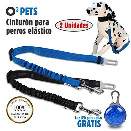 O³ PETS Cinturon Perro Coche Homologado 2 Unidades Elásticos con Luz LED para...