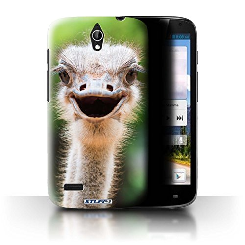 Stuff4® Hülle/Hülle für Huawei Ascend G610 / Strauß/Emu Muster/Wilde Tiere Kollektion