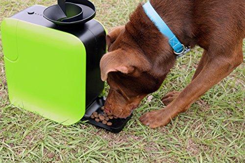 Dot Pet® Ballwurfmaschine Apportiermaschine für Hunde inkl. 3 Bälle Automatische Futter-Belohnung Trainings-Spielzeug Hund-erziehung Dog Training -