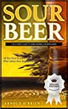 SOUR BEER: The Ultimate Guide To Home Brewing For Beer Lovers (Mixology and Bartending Enthusiasts Book 1) (English Edition)