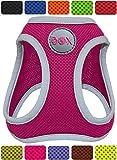 DDOXX Brustgeschirr Step-In Air Mesh reflektierend in vielen Farben & Größen für kleine, mittelgroße & große Hunde | Hundegeschirr klein groß verstellbar | Geschirr Hund Welpen Auto | Pink, L