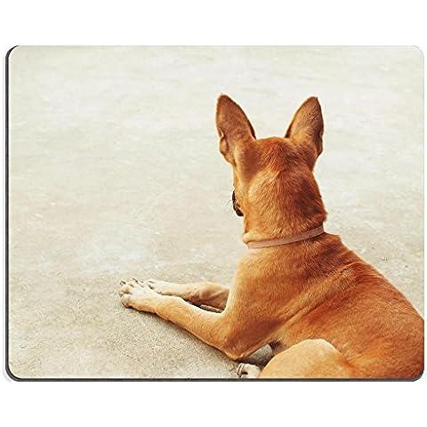 Jun XT caucho Natural Gaming Mousepads ingredientes de pellets de alimentos para mascotas imagen ID 25229847