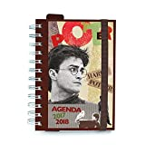 Agenda escolar 2017/2018 Harry Potter (en Italiano)