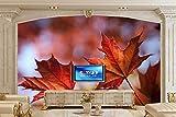 XLi-You 3D Tapete Fresko Custom 3D Wandbilder Tapeten Closeup Laub Ahorn Natur Wallpaper Wohnzimmer Fernseher Sofa Wand Schlafzimmer Wandmalerei Hintergrundbild 200cmX150cm