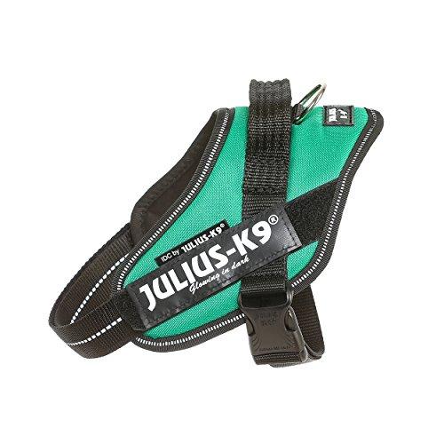 Julius-K9 16IDC-GG-M IDC Power Harness, Tamaño Mini, Verde Hierba
