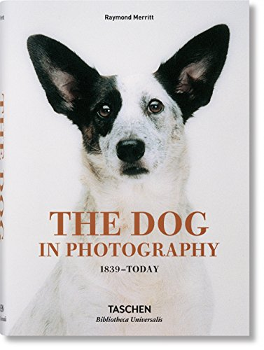 The Dog in Photography 1839–Today Buch-Cover