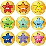 19MM Mini Multi-Coloured Star Stickers