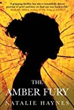 The Amber Fury by Natalie Haynes (2014-03-06)