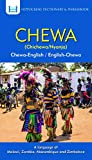 Chewa-English/ English-Chewa Dictionary & Phrasebook