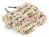 FiveSeasonStuff® 144 Stück Papier Rose Blumen künstliche Blumen, perfekt für Hochzeit Gunst Boxen, Party, Haus & Garten Dekor, Kunsthandwerk, DIY (Rosa Beige)