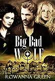 Big Bad Wolf (Hostage Book 3) by Rowanna Green