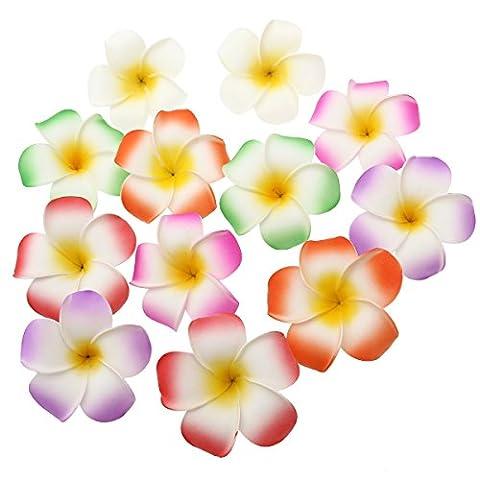 Frcolor 8,9cm Hawaii Pince à cheveux Fleur accessoire pour cheveux en mousse pour Beach Party, mariage, 12pièces