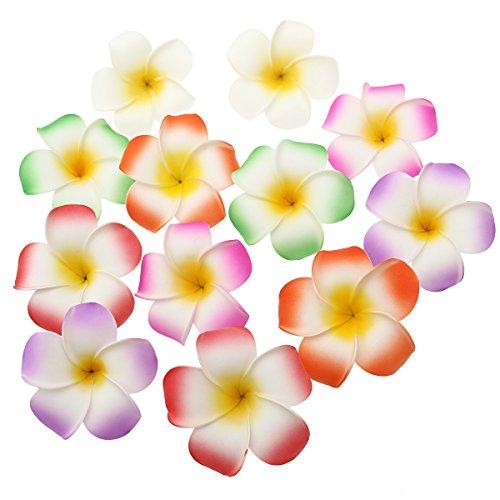 waii Blumen Haarspange Haarclip Plumeria für Strand Party Hochzeit Dekoration (Luau-themed Dekorationen)