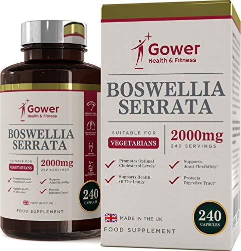 Die Aktive Faser-pulver (Boswellia Serrata Weihrauch-Kapseln | Hochdosiert 5:1 (entspricht 2000 mg) | 240 Kapseln | STARK ENTZÜNDUNGSHEMMEND | Muskel- & Gelenkgesundheit | Vorrat für 4 Monate | Hergestellt in GB)