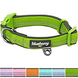 Blueberry Pet Soft & Comfy 3M Reflective Spring Pastel Baby Green Adjustable Padded Dog Collar, Neck 37cm-50cm, Medium, Collars for Dogs, Matching Harness Available Separately