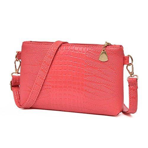 Mittagessen Laptop Tote (Handtasche Btruely Jahrgang Damen Schultertasche Elegant Frau Mini Messenger Quaste Umhängetaschen Klein Tote Damen Handtasche (Wassermelonenrot))