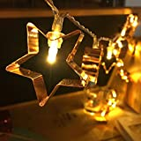 LED Starry Light,3Meters 20 Bulbs Warm White Rose Gold Star Shape Fairy String Lights Clear Cable Battery Powered for Valentine's,Wedding,Bedroom,Indoor Decoration